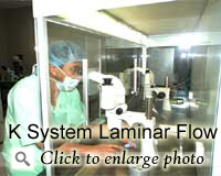 K System Laminar Flow Work Station
